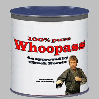 SEO as approved by Chuck Norris